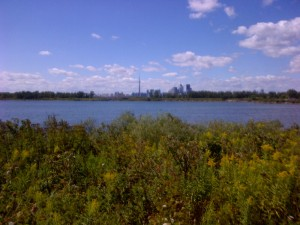 View from Tommy Thompson Park