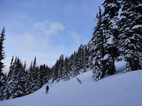 Whistler Toronto skiing