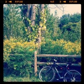 Best bike trails Toronto